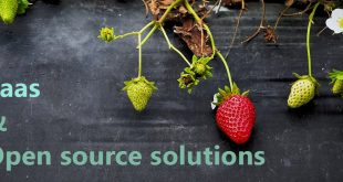 open source solutions and SAAS